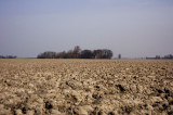 Klei, klei en nog eens klei, voormalige waddenzee, noord Groningen