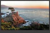California Trip
