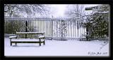 Winter's Slumber