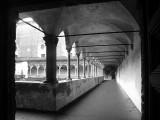 Pavia, Milan