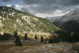 Late Afternoon-Alpine Loop