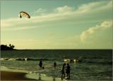 Cayenne, the beach (la plage)