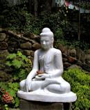 Image of the Buddha holding a bird