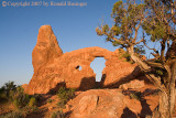 Arches & Canyonlands