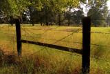 Fence Near Our House, Velvia