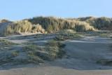 Balade dans la baie d'Authie le lundi 1er janvier 2007 avec un vent de 100-120 km/h !