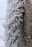 Fleurs de glace au sommet du puy Pariou