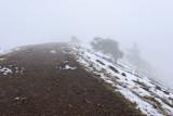 Au sommet du puy Pariou