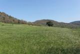 Vacances dans le Languedoc- Promenade près de Lodève