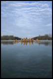 WM-2007-03-04-0115- Versailles - Alain Trinckvel-01 copie.jpg