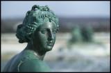 WM-2007-03-04-0319- Versailles - Alain Trinckvel-2 copie.jpg