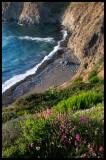WM-2007-08-07--4869---Californie---Alain-Trinckvel-2.jpg