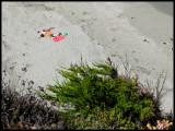 WM-2007-08-07--1896---Californie---Alain-Trinckvel-2.jpg