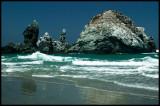 WM-2007-08-07--2094---Californie---Alain-Trinckvel-3.jpg