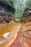 call o' the canyon