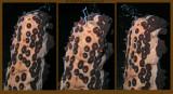 Sea Cucumber Spawning