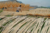 Drying bamboo sticks.jpg