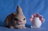 Thank you, Easter Bunny! Bock, Bock!