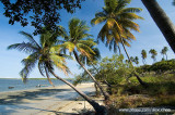 Praia do fortim_DSC4214