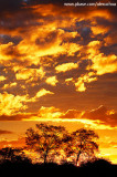 Pôr-do-sol no sertão, Quixadá_3504