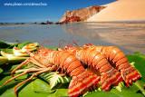 Lagostas na praia de Ponta Grossa, Icapuí_3914