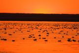 beaverhills lake sunset 091507IMG_2450