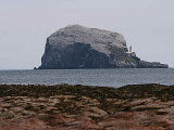 Bass Rock, North Berwick