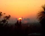 Aug 19 03 LA Sunset-1792.jpg