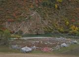 Prayer flag garden