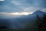 Virunga Mountains - Gorillas in the Mist
