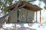 Front of My Tent