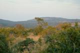 Makuti Landscape