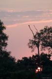 Rifa Sky