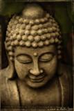 buddha in my garden