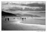 A Stroll on Cannon Beach