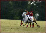 Playing PoloCrosse