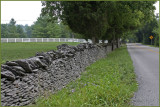 Bluegrass Stone Fence