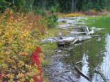 Alpine Lakes Wilderness - Squaw Lake