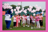 Susan G. Komen Pitch for the Cure Night