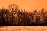 warm tone watercolor ir.jpg