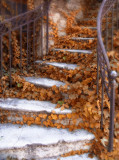 15- Steps of Autumn