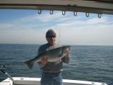 fish1_2007.jpg