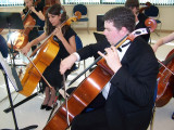 High School Chamber Orchestra