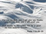 Psalm 118 28_29.jpg