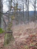 Krzyż cmentarny w Iwaszkowcach(IMG_4150.jpg)