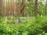 Leśny cmentarz(IMG_4732.jpg)