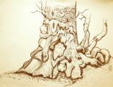 More Art Drawings