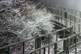****** ICE AND SNOW ******