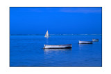 Boutre et Barques à Gravier