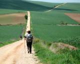 Irena walking along the wheatfields in the meseta